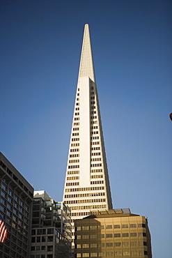 Low angle view of a building, Transamerica Pyramid, San Francisco, California, USA