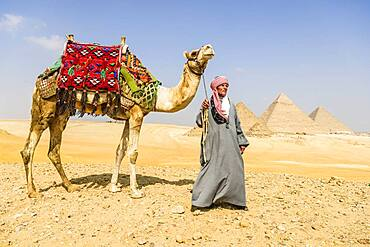 Three pyramids, tombs of the pharaohs Khufu, Khafre, and Menkaure, a tourist guide holding a camel