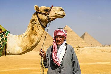 Three pyramids, monuments and burial tombs of the pharaohs, a tourist guide holding a camel