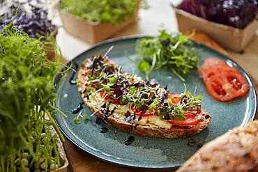 Brown bread covered with cheese, tomato and microgreens on plate surrounded