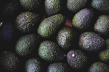 High angle close up of freshly picked avocados.