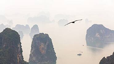 Aerial view over misty Ha Long Bay and tall rock pillars, Ha Long Bay, Vietnam