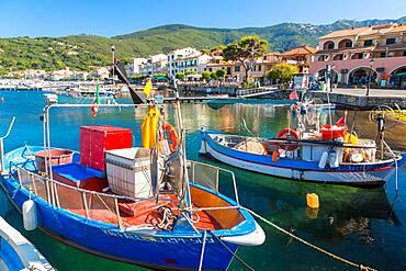 Fishing boats moored in the harbour, Marciana Marina, Elba Island, Italy
