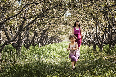 Two children walking in a woodland tunnel of overarching tree branches, Utah, USA