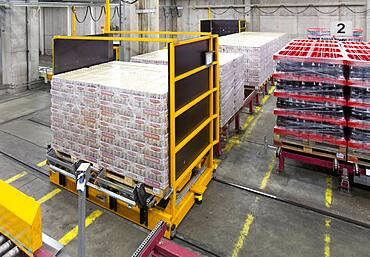Warehouse, cartons and boxes of beer