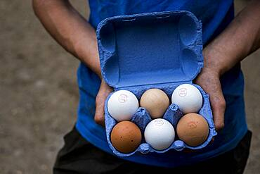 Close up of person holding blue carton of brown and white eggs.