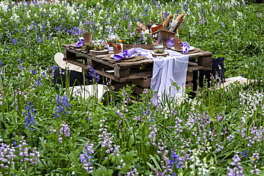 Rustic picnic table with food in a spring meadow for a woodland naming ceremony.