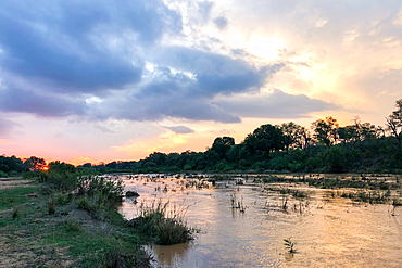 A landscape shot of a river at sunset, Londolozi Game Reserve, South Africa