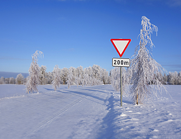 Roadside traffic sign in winter. Give way or yield road sign.