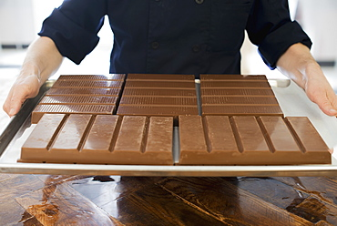 Organic Chocolate Manufacturing. A person holding a tray of processed chocolate slabs, Woodstock, New York, USA