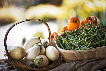 Organic Vegetable on Display; Organic White Eggplant; Green Beans; Yellow and Red Bell Peppers, Woodstock, New York, USA
