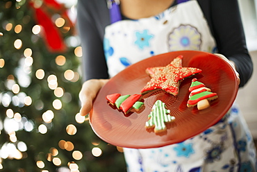 A woman wearing an apron holding a plate of organic decorated Christmas cookies, Woodstock, New York, USA
