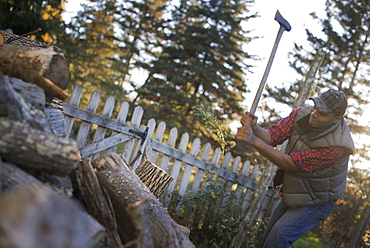 A man wielding an axe, and chopping wood, splitting logs for the fire, Woodstock, New York, USA