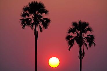 Sunset, Botswana, Botswana