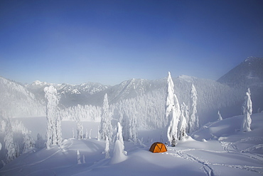 A bright orange tent among snow covered trees, on a snowy ridge overlooking a mountain in the distance, Cascade Mountains, Washington, USA