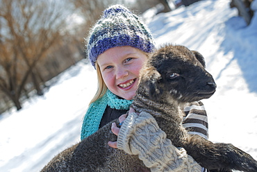 Winter scenery with snow on the ground. A young girl holding a young lamb, Provo, Utah, USA