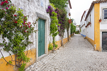 A quiet narrow street of traditional houses in the village of Sonega, Sonega, Obidos, Portugal