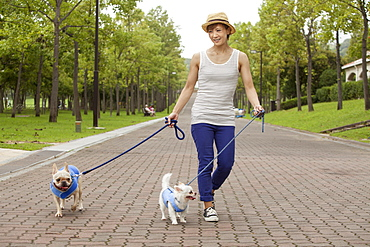 Woman walking two dogs on a paved path, Kyoto, Honshu Island, Japan