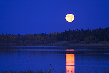 A full moon in the night sky reflected in the waters of a lakeFull moon, Saskatchewan, Canada