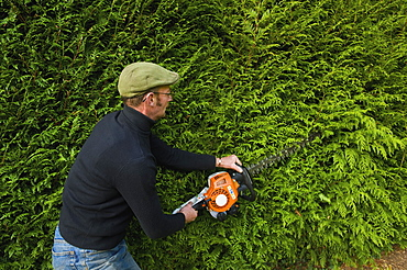A man trimming a thick green hedge with a motorized hedge trimmerHedge trimming, Gloucestershire, England