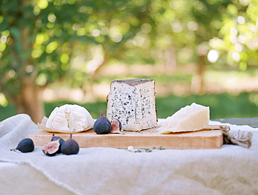 An apple orchard in Utah. A table with food, a cheese board, Sataquin, Utah, United States of America