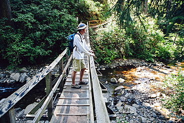 Man walking across small foot bridge in lush temperate rainforest in Oregon, Oswald West State Park, Tillamook County, Oregon, USA