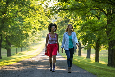 Two women walking down a path lined with trees, Woodstock, New York, USA