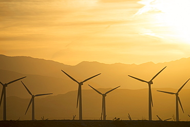 A group of wind power turbines in the sunset, United States of America