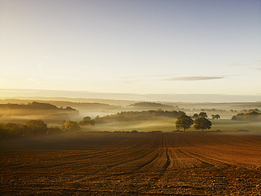 A ploughed field and view over surrounding undulating hills, at dawn with a mist rising from the land, Field Landscape, England