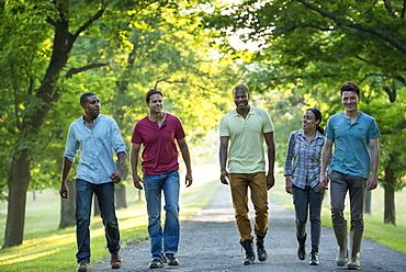 Five people walking down a tree lined avenue in the countryside, Woodstock, New York, USA