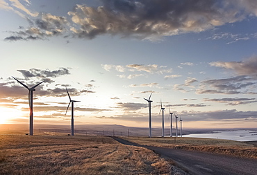 A group of wind turbines standing next to a road in a moorland landscape on the coast at dawn.