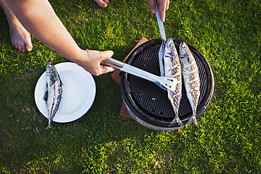 A woman barbecuing two fresh mackerel fish on a small grill, turning the fish, England, United Kingdom