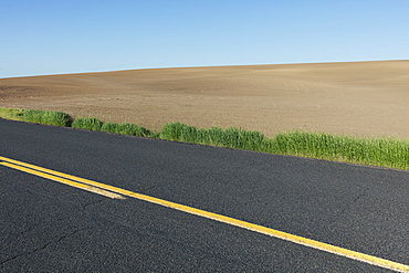 Road through fertile farmland in Spring, Washington, United States of America
