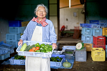 Elderly woman with grey hair standing in front of barn, holding blue plastic crate with fresh vegetables, smiling at camera, Japan