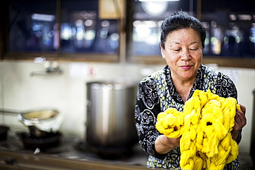 Japanese woman standing in a textile plant dye workshop, holding piece of bright yellow fabric, Kyushu, Japan