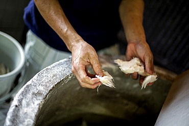 Man's hands separating pieces of vegetable fibres to make traditional Washi paper, Kyushu, Japan