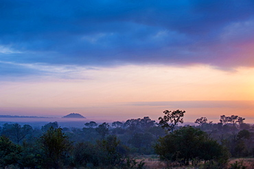 A landscape, dark trees and bushes in foreground, silhouette of mountains with mist in the background, heavy grey clouds with sunset, Londolozi Game Reserve, Sabi Sands, Greater Kruger National Park, South Africa