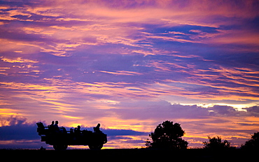 A silhouette of the side profile of people sitting in a Land Rover against pink, purple and yellow sunset sky, Londolozi Game Reserve, Sabi Sands, Greater Kruger National Park, South Africa