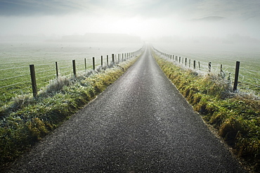 Road through rural fields, Ross-shire, Scotland, UK