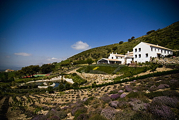 Country Hotel, Antequera, Andalucia, Spain