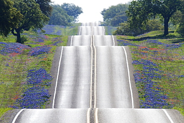 Scenic Country Road, Texas, United States of America