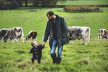 Man and young boy walking on a pasture, with English Longhorn cows in the background, Oxfordshire, England