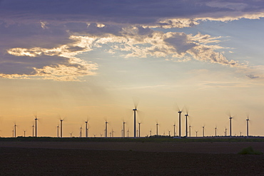 Wind Farm at Dusk, Roscoe, Texas, USA