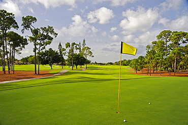 Golf balls by hole on putting green, Palm Beach, Florida, USA