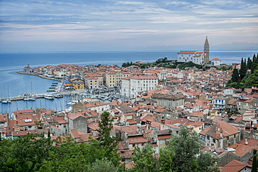 Aerial view of buildings in cityscape, Piran, Coastal-Karst, Slovenia