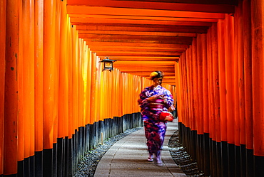 Woman in kimono walking under wooden pillars, Kyoto, Japan