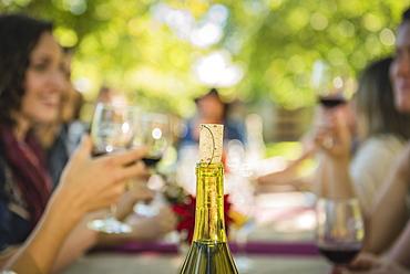 Cork in wine bottle near people drinking wine, Langly, Washington, USA - 1174-6429