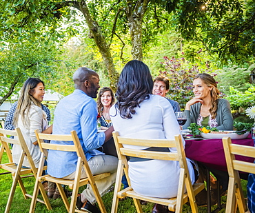 Friends enjoying wine at party outdoors, Langly, Washington, USA - 1174-6433