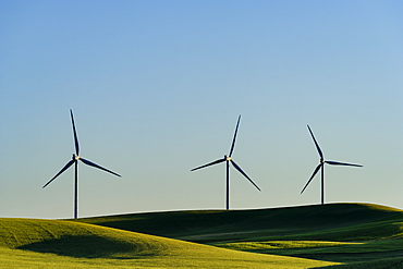 Wind turbines in green rolling landscape, Spokane, Washington, USA