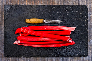 High angle close up of rhubarb stalks and knife on black slate, Oxfordshire, England